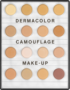 KRYOLAN DERMACOLOR CAMUFLAGE MINI-PALETTE WITCH 16 SHADES FAIR