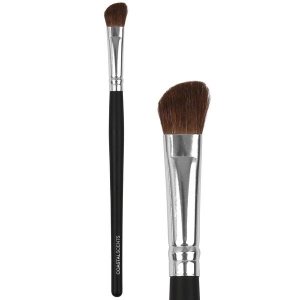 COASTAL SCENTS CLASSIC SHADOW ANGLE LARGE NATURAL BRUSH